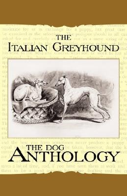 The Italian Greyhound - A Dog Anthology (A Vintage Dog Books Breed Classic) (Paperback): Various