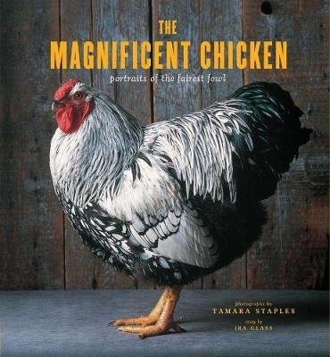 The Magnificent Chicken - Portraits of the Fairest Fowl (Hardcover): Tamara Staples
