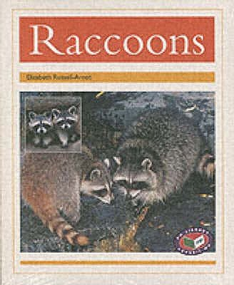 PM Gold Animal Facts Nocturnal Animals Racoons (x6) (Paperback, New edition): Elizabeth Russell-Arnot