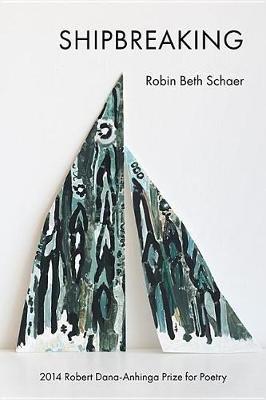 Shipbreaking (Paperback): Robin Beth Schaer