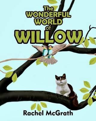The Wonderful World of Willow (Paperback): Rachel McGrath