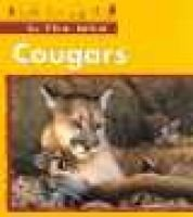 Cougars (Paperback): Stephanie St.Pierre, Claire Robinson