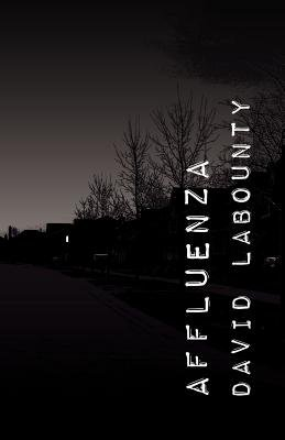 Affluenza (Paperback, New): David Labounty