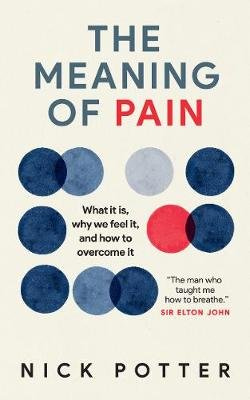 The Meaning of Pain - What it is, Why We Feel it, and How to Overcome it (Paperback): Nick Potter