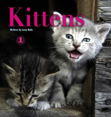 Kittens (Paperback): Lucy Hale