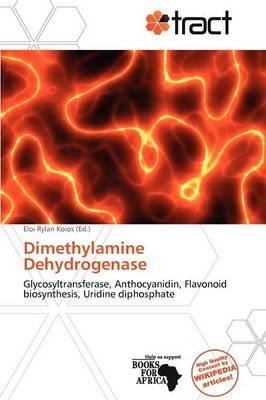 Dimethylamine Dehydrogenase (Paperback):