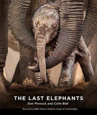 The Last Elephants (Paperback, Flexibound): Colin Bell, Don Pinnock