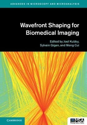 Advances in Microscopy and Microanalysis - Wavefront Shaping for Biomedical Imaging (Hardcover): Joel Kubby, Sylvain Gigan,...