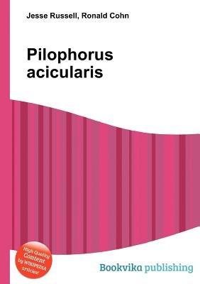 Pilophorus Acicularis (Paperback): Jesse Russell, Ronald Cohn