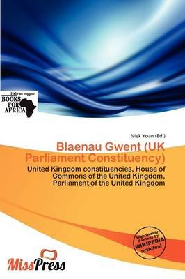 Blaenau Gwent (UK Parliament Constituency) (Paperback): Niek Yoan