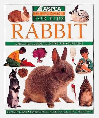 Rabbit (Paperback, 1st American ed): Mark Evans