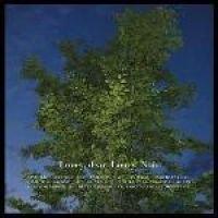 Loney Dear - Loney Noir (CD, Imported): Loney Dear