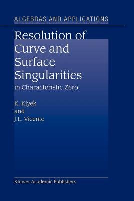 Resolution of Curve and Surface Singularities in Characteristic Zero (Paperback, Softcover reprint of hardcover 1st ed. 2004):...