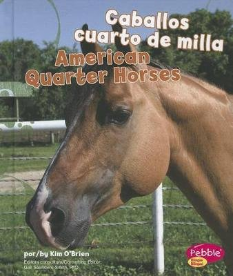 Caballos Cuarto de Milla/American Quarter Horses (Multiple languages, Hardcover): Kim O'Brien