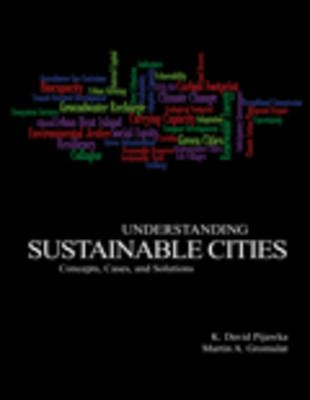 Understanding Sustainable Cities - Concepts Cases and Solutions (Paperback): Martin Gromulat, David Pijawka