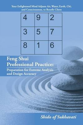 Feng Shui Professional Practice - Preparation for Extreme Analysis and Design Accuracy (Electronic book text):