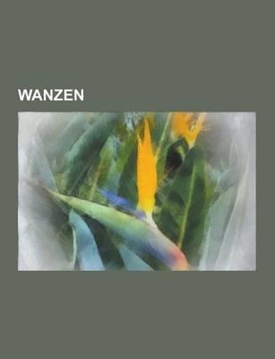 Wanzen - Ruderwanzen, Bettwanze, Amerikanische Kiefernwanze, Triatominae, Ruckenschwimmer, Plattwanzen, Raubwanzen, Kohlwanze,...