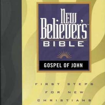 New Believer's Bible - Gospel of John (Downloadable audio file): Greg Laurie