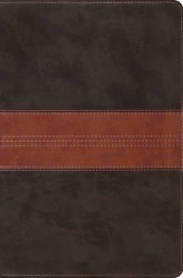 ESV Single Column Legacy Bible (Leather / fine binding):