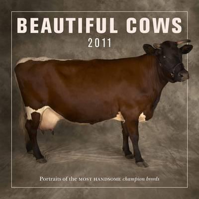 Beautiful Cows 2011 (Calendar):