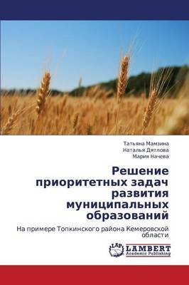 Reshenie Prioritetnykh Zadach Razvitiya Munitsipal'nykh Obrazovaniy (Russian, Paperback): Mamzina Tat'yana, Dyatlova...