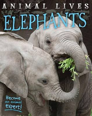Elephants (Hardcover): Sally Morgan