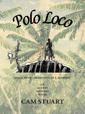Polo Loco Out of the Blizzard Into the Light - Polo, Peril, Awakening in S. Florida (Electronic book text): Cam Stuart