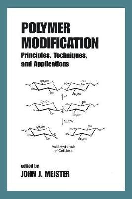 Polymer Modification - Principles, Techniques and Applications (Hardcover): John Meister