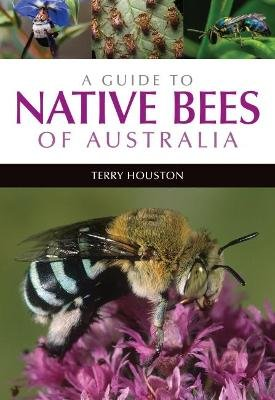 A Guide to Native Bees of Australia (Paperback): Terry Houston