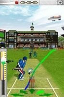 Freddie Flintoff's Power Play Cricket (Nintendo DS, Game cartridge):