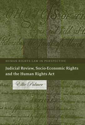 Judicial Review, Socio-Economic Rights and the Human Rights ACT - In Silence with Heidegger (Electronic book text): Ellie Palmer