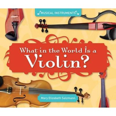 What in the World Is a Violin? (Electronic book text): Mary Elizabeth Salzmann