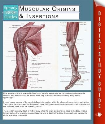 Muscular Origins & Insertions (Speedy Study Guides) (Electronic book text): Speedy Publishing LLC