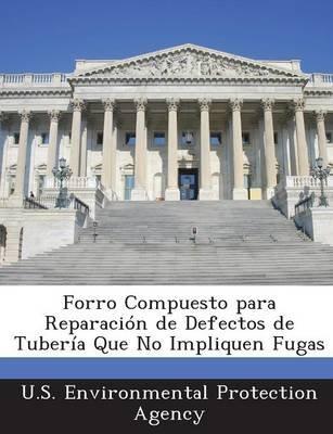 Forro Compuesto Para Reparacion de Defectos de Tuberia Que No Impliquen Fugas (English, Spanish, Paperback): U.S. Environmental...