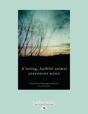 A Loving, Faithful Animal (Large print, Paperback, Large type / large print edition): Josephine Rowe