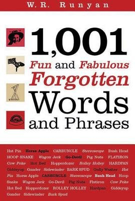 1,001 Fun and Fabulous Forgotten Words and Phrases (Hardcover): W.R Runyan