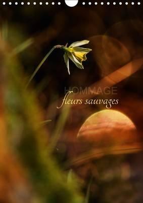 Hommage Fleurs Sauvages 2017 - Petit Hommage Aux Fleurs De Nos Campagnes (French, Calendar, 2nd edition): Cecile Gans