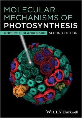 Molecular Mechanisms of Photosynthesis (Paperback, 2nd Edition): Robert E. Blankenship