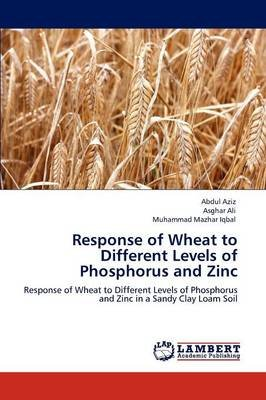 Response of Wheat to Different Levels of Phosphorus and Zinc (Paperback): Abdul Aziz