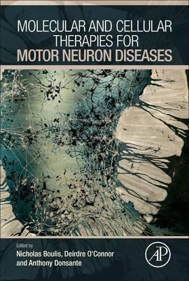 Molecular and Cellular Therapies for Motor Neuron Diseases (Hardcover): Deirdre O'Connor