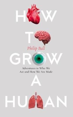 How to Grow a Human - Adventures in Who We are and How We are Made (Hardcover): Philip Ball