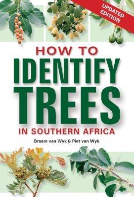 How To Identify Trees In South Africa (Paperback, Updated 2nd Edition): Braam van Wyk, Piet Van Wyk