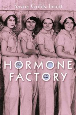 The Hormone Factory - A Novel (Paperback): Saskia Goldschmidt