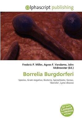 Borrelia Burgdorferi (Paperback): Frederic P. Miller, Agnes F. Vandome, John McBrewster