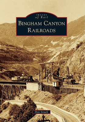 Bingham Canyon Railroads (Paperback): Don Strack