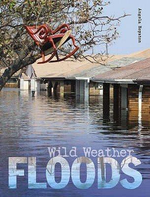 Floods (Hardcover): Angela Royston