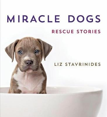 Miracle Dogs - Rescue Stories (Hardcover): Liz Stavrinides