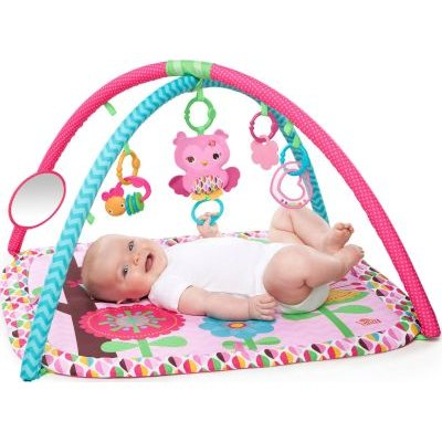 Pretty in Pink Charming Chirps Activity Gym: