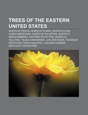 Trees of the Eastern United States - Quercus Prinus, Quercus Rubra, Quercus Alba, Ulmus Americana, Quercus Palustris, Quercus...