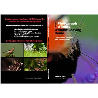 How to Photograph Wildlife without Leaving Home (Paperback): James D. Eate